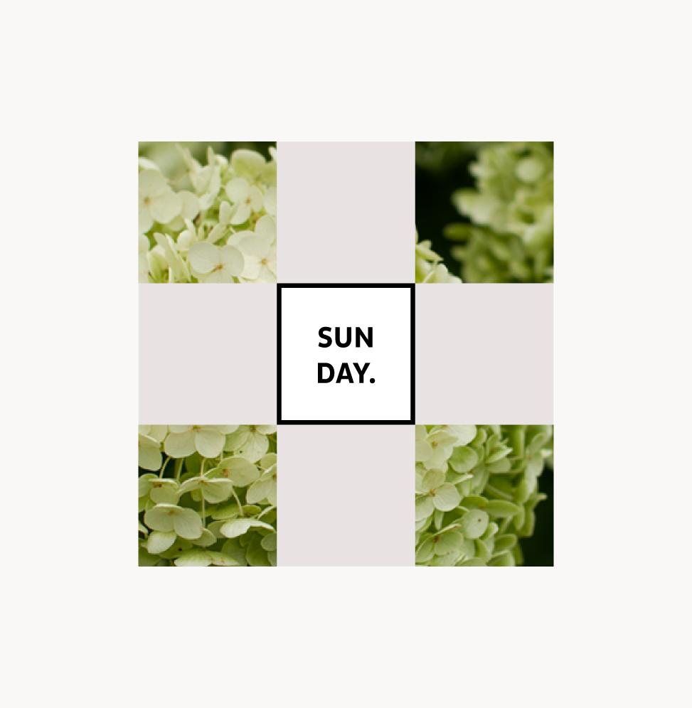Ein Bild zum Sonntag