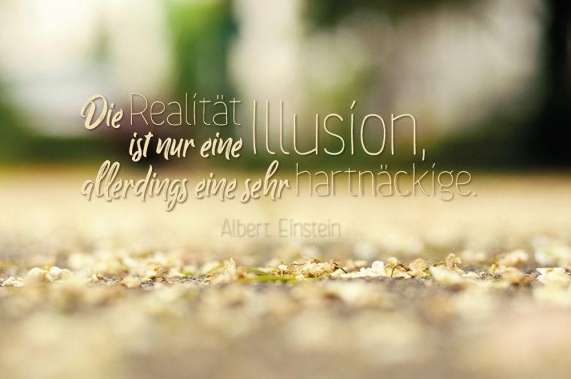 illusion realität