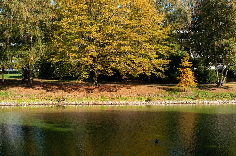 Kaiserpark im Herbst